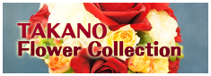 TAKANO Flower Collection
